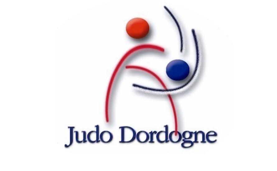 Logo du DORDOGNE JUDO